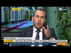 Manlio Di Stefano (M5S) a RaiNews24 12/1/2017