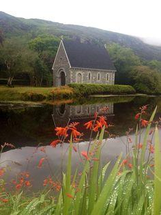 Montbretia at Gougane Barra, West Cork, Ireland
