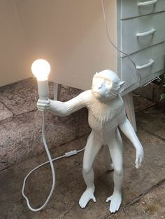Monkey lamp. Eyecatcher!!  New in our collection!! #Monkeylamp #Seletti #studiodewinkel