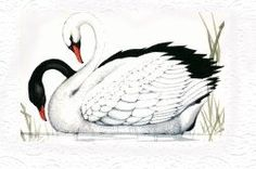 illustraties, schilderijen en plaatjes van Sulamith Wulfing ...