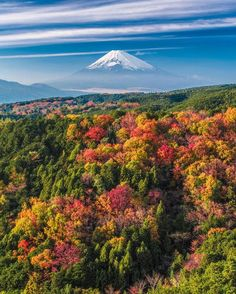 In Love with Japan Best Places To Travel, Places To Visit, Wonderful Places, Beautiful Places, Beautiful Scenery, Mont Fuji, Bali, Shizuoka, Destinations