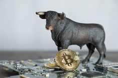 Майнинг биткойнов продолжается бычьим курсом — мнение ECHO Raging Bull, Double Down, Crypto Market, Year Of Dates, Les Sentiments, Bitcoin Price, Blockchain Technology, Crypto Currencies, Things That Bounce