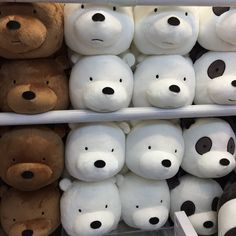 "webareebears: ""Bear plushies that are in harajuku shop Japan """