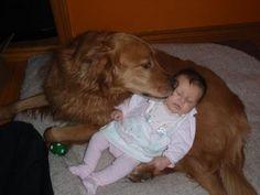Doggy Kiss