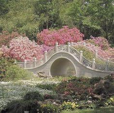 Nature Aesthetic, Flower Aesthetic, Aesthetic Photo, Aesthetic Pictures, Spring Aesthetic, Aesthetic Green, Different Aesthetics, Princess Aesthetic, Garden Bridge