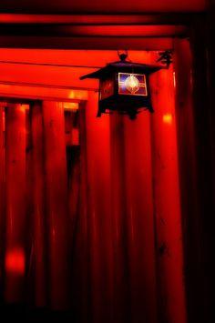 This lighting at the Ceremony. Torii gates at Fushimi Inari shrine, Kyoto, Japan 伏見稲荷大社