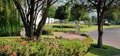 Image result for jardines en avenidas