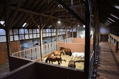What Life Means as an Equestrian — diaryofaworkingstudent: Intriguing Barn design...