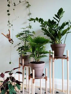 DIY plant stands made of copper and wood projekte mit kupfer 12 Elegant DIY Plant Stand Ideas and Inspirations - EnthusiastHome Dulux Valentine, Wood Plant Stand, Plant Stands, Decoration Plante, Plant Shelves, Diy Garden Decor, Plant Holders, Plant Decor, Indoor Plants