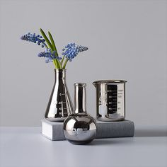 Silver Flash Labware Bud Vases | MoMA Moma Store, Aroma Diffuser, Bud Vases, Floating Shelves, Diffusers, Silver, Industrial, Random, Design