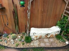 Cactus , rock bench that I made too relax