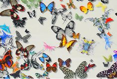 christian lacroix designer/images | bold colors and 3D effect of the butterflies in this Christian Lacroix ...