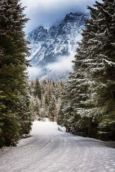 59 Ideas For Winter Landscape Photography Snow National Parks Winter Szenen, Winter Magic, Winter Road, Hello Winter, Winter Mountain, Winter Camping, Mountain View, Winter White, Mountain Biking