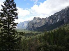 Yosemite, photo by Tina Buell