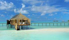 Constance Moofushi Resort (Maldives) - Jetsetter