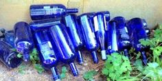 How to EASILY Remove Bottle Labels for Garden Crafts