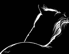 Realistic and life like pencil drawings of horses and dogs from your photographs by artist Sara (Erhardt) Schank Horse Drawings, Dark Drawings, Pencil Drawings, Logo Caballo, Arte Hip Hop, Black Paper Drawing, Scratchboard Art, Watercolor Horse, Scratch Art