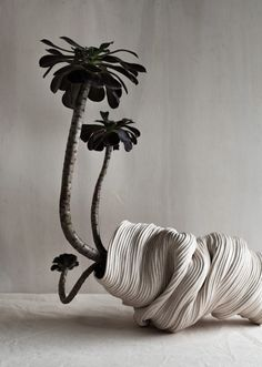 Hand-coiled ceramic vessels by Rose Wei of Zhu Ohmu.