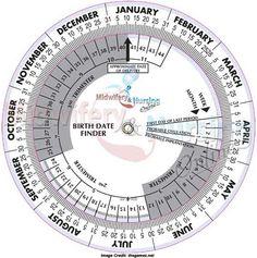 Procedure of Due Date Calculation