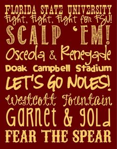 Florida State Seminoles...CAN'T WAIT TO BE BACK <3