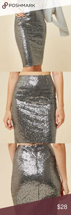 c19a6a60d7 🌟HAYDEN LOS ANGELES SILVER SEQUIN PENCIL SKIRT BRAND NEW ONLINE FOR $58  THIS IS THE