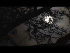 Cat Power, 'The Moon' via YouTube - Music Video