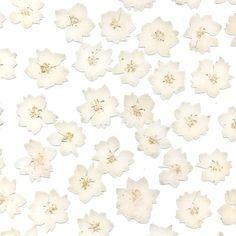 Varia Ecoresin | Organics | Antique Fleur | Materials | 3form
