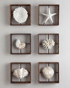 Faux Coral Shadowboxes from Horchow. How great will these shadowboxes look on th… Faux Coral Shadowboxes from Horchow. Coastal Bedrooms, Coastal Homes, Coastal Living, Coastal Wall Decor, Sea Coral Decor, Coastal Entryway, Coastal Rugs, Coastal Farmhouse, Coastal Cottage
