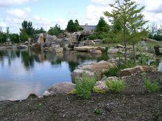 Canada's #1 Pond, Stream & Waterfall Landscape Specialist