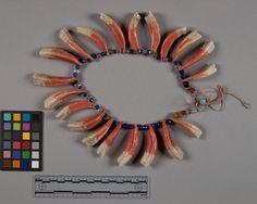 Ожерелье из лошадиных зубов, Кроу. Коллекция Victor J. Evans. Монтана. 1931 год. NMNH - Anthropology Dept.