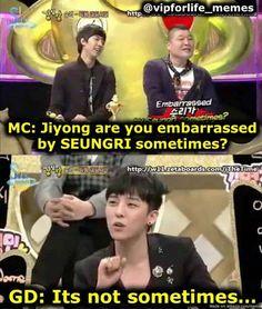 The time G-Dragon was low-key savage! Daesung, Gd Bigbang, Big Bang Memes, Big Bang Kpop, Bang Bang, G Dragon, Vixx, Btob, Meme Center