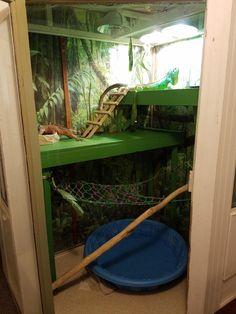 Massive Indoor Iguana Enclosure http://ift.tt/2xcsrEj