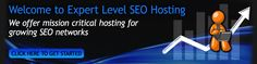 SEO Hosting Experts offers Private SEO Clouds and Virtual Dedicated SEO Servers with large IPv4 resources. Contact us today to have us set up and configure your VMware based private cloud or virtual dedicated server with multiple /24 subnets or up to 800 IPv4 unique IP addresses from different Class C subnets.