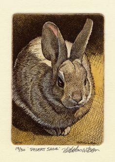 Nicholas Wilson Original Etching of Rabbit