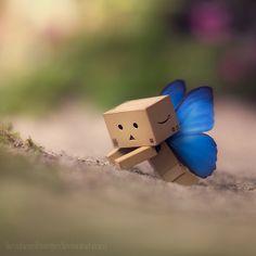 Dando, the little box by Booboo