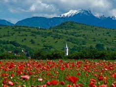 Țara Bârsei / Burzenland, Transylvania