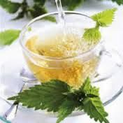 Benefits of Stinging Nettle Natural Remedies For Stress, Natural Stress Relief, How To Sleep Faster, How To Get Sleep, Herbal Remedies, Home Remedies, Herb Recipes, Yummy Drinks, Get Healthy
