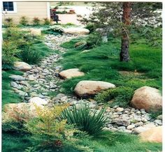 We want to build a dry creek/rain garden to help redirect the sump pump water away from our yard and into the woods