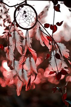 The dream of something incredible has a name - we call it hope. Cute Wallpapers, Wallpaper Backgrounds, Geometric Wallpaper, Dream Catcher Wallpaper Iphone, Dreamcatcher Wallpaper, Dream Catcher Art, Medicine Wheel, Feather Art, Tumblr Photography