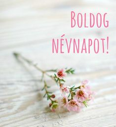Boldog névnapot képeslap @e5let #nevnap #kepeslap Happy Name Day Wishes, Happy B Day, Birthday Greetings, Birthday Wishes, Happy Birthday, Today Is My Birthday, Praise And Worship, Holidays And Events, Special Day