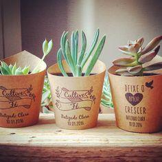 Blog DeProposito - Três dicas de lembrancinhas originais e cheias de propósito! Pink Succulent, Succulent Wedding Favors, Cactus Wedding, Succulent Bouquet, Succulents Diy, Planting Succulents, Succulent Gardening, Succulent Terrarium, Creative Coffee
