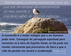 A conversão é o maior milagre que o ser humano pode viver.