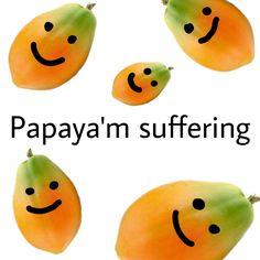 Awesome punsfordays Images on PicsArt Reaction Pictures, Funny Pictures, Response Memes, Depression Memes, Quality Memes, Cute Memes, Dankest Memes, Jokes, Stupid Funny Memes