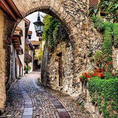 Saint-Saphorin (Canton du Vaud)