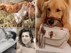 Charlotte Casiraghi Gucci Forever Now