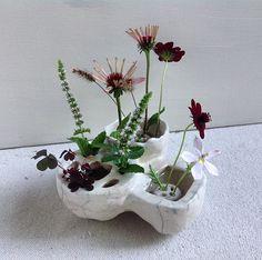 Ikebana Flower Arrangement, Flower Vases, Flower Arrangements, Ceramic Clay, Ceramic Vase, Ceramic Pottery, Flower Frog, Cecile, Bottle Vase