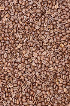 Donald  Erickson - Coffee Beans