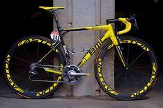 Cadel Evans Tour de France championship bike