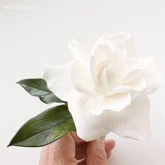 Sunday night...taping gardenia leaves to their flowers.  #petalsweet #sugarflowers #gardenia #sugarleaves #white #green #weddingcakes #cakedecorating #cake #sugarart #sugarartist #wedding #sugarcraft