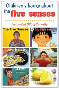 Books about the five senses for kids - Six individual books and three book series featuring children's books about the five senses #fivesenses || Gift of Curiosity